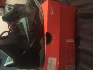 LEBRON 11'S *WITH BOX* NEED GONE BY THURSDAY