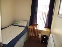 Brand new Very Spacious single room to rent