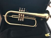 Fugal Horn (Stagg)