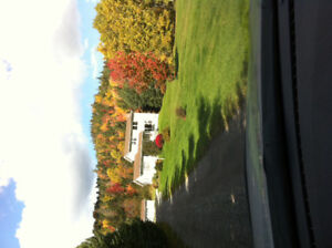 Gambo Home For Sale