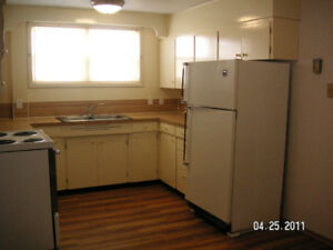1 bedroom basement suite for rent in Warner AB