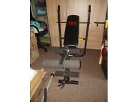 Pro Power Bench with Bars, Dumbbells, Weights and More