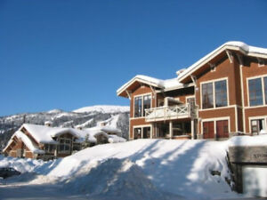 Ski InSki Out!! 2 BDR2BA Condo! Comfortable and Clean !!