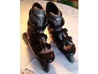 No Fear (in-line) Roller Skates, size 9-12. Great condition