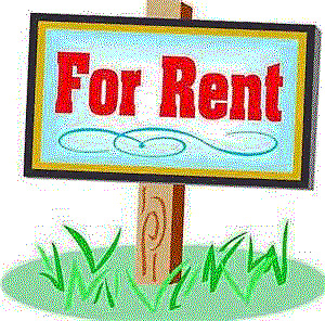 Professional Looking to Rent