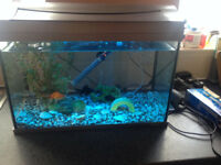 Tetra fish tank with led light which is many different colours,2ft x 1ft 60 litres,got new heater