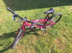 Isla Bike Beinn 20 Large Pink
