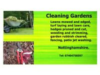 We are cleaning gardens