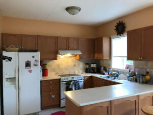 KITCHEN CABINET - USED