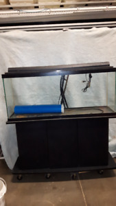Aquarium ( Fish Tank ) and Stand 48 gal