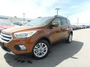 2017 Ford Escape SE 1.5L I4 ECO 201A