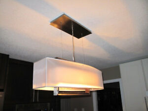 Designer SS Suspended Light Fixture
