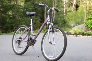Ladies Schwinn Bike