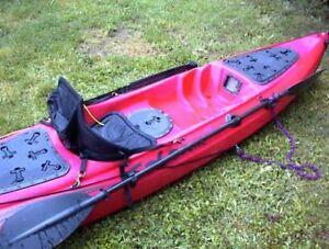 COBRA Kayaks. Great for fishing and scuba diving!