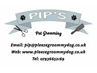 Great New Wash'n Go Dog Grooming Service