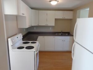 Really nice small 2 bedroom apartment