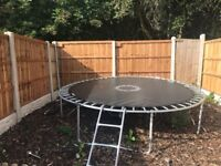 6 month old 10 ft trampoline. No longer have the safety net