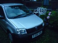 lovely Fiat Panda good home required