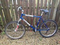 "Mountain Bike - 21.5"" frame"