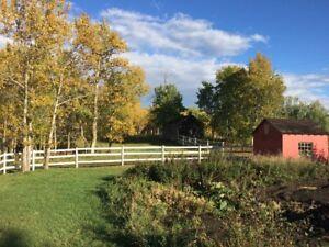 Country Home Hobby Farm Acreage