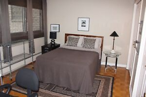 1 bedroom next to McGill university for rent