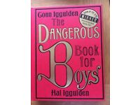 Hardback books - The Family Book of Amazing things to do together + The dangerous book for boys