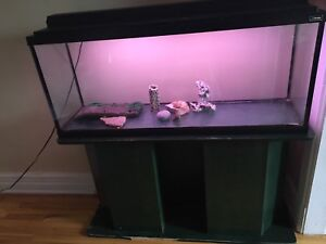 Fish tank for sale 48gallons