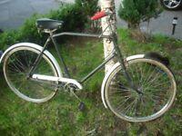 1950s Vintage Pashley (England) singlespeed cargo / roadster bike.