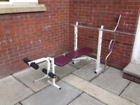 GOLDS GYM - Training Bench