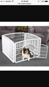 Looking for a puppy playpen
