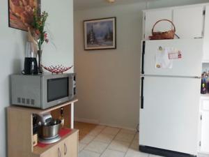 appartement 3 et 1/2 a louer  à partir 20 octobre .