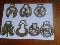 7 horse brasses