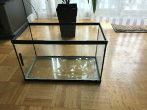10.5 Gallon Fish Tank