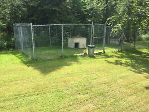 Dog Kennels   3 - sizes to sell
