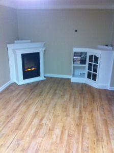 LARGE BRIGHT BASEMENT APARTMENT FOR 1 PERSON