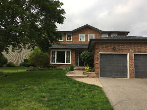 Main St. Markham Rd. and Hwy 7 House for Lease