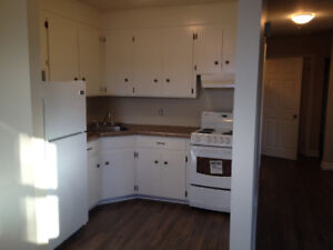 Sydney, 2 bedroom, newly renovated, laundry in unit.