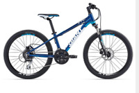 Lost Giant mountain bike- youth 24""