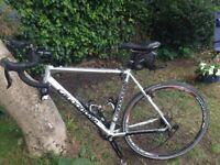 Cannondale Road Bike En14781 Cycling
