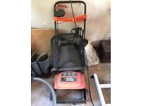 Black and Decker Lawn raker