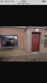1 bed apartment centre of glengormley