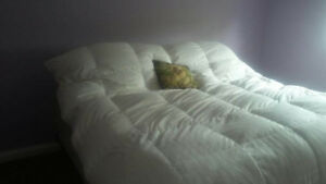 King-size mattress with box and steel frame.