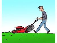 tonte de pelouse *spécial mi-saison*