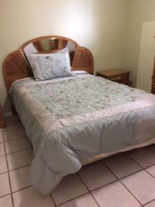 furnished one bedroom walkout apartment