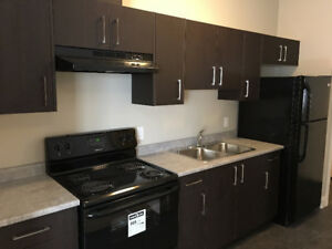 Brand New One Bedroom Suite Available for September 1st, 2017!