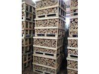 Crate of Kiln Dried Ash Logs