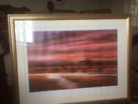 African elephant picture in gold frame
