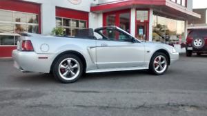 Mustang convertible gt manuel