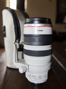 Canon 28-300 mm L lens