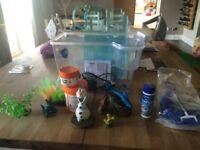Finding Nemo starter Fish tank plus lots of extras!